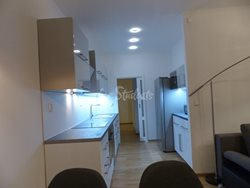 Two bedroom apartment for rent in Dejvice - P1020142