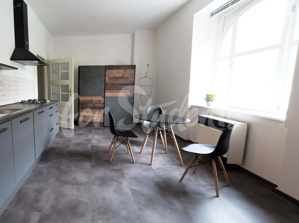 Modern one bedroom apartment near the Faculty of Medicine, Hradec Králové - 66/20