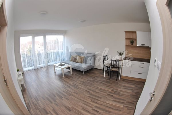 Spacious one bedroom apartment with balcony - B5/20