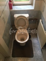 Spacious two bedroom apartment with a terrace, Prague - toilet
