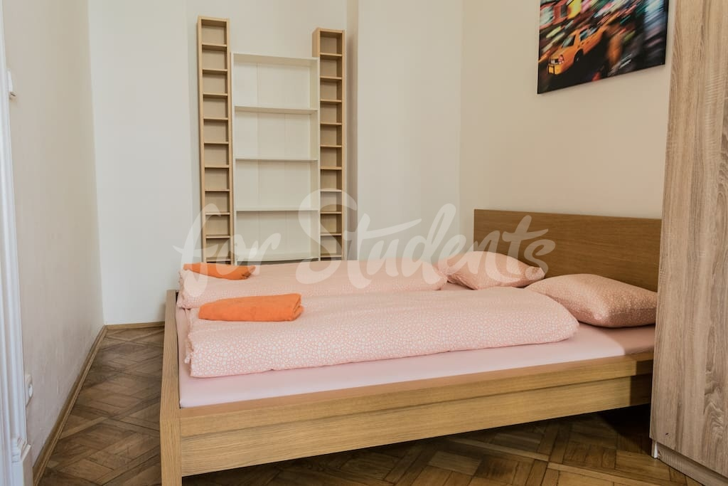 One bedroom apartment next to Wenceslas Square