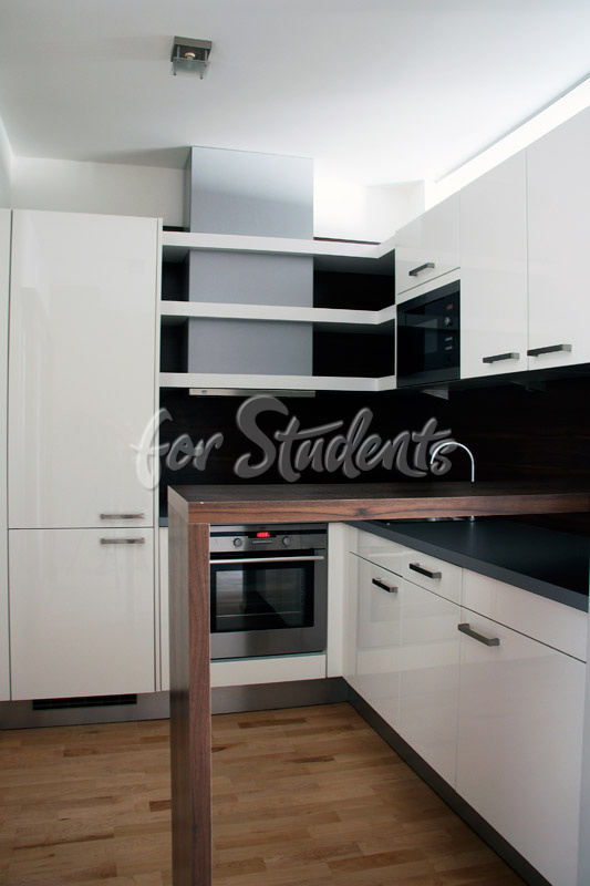 Luxurious studio apartment in the centre of Brno (file kuchyn.jpg)