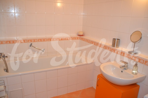 Spacious and modern studio apartment, Prague (file bathroom-II.jpg)
