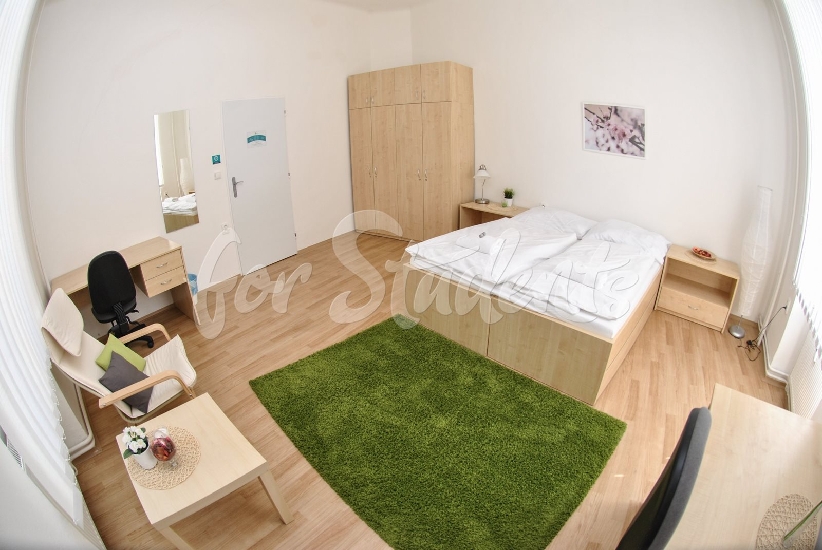 Place for girl in a double room in the Brno city centre