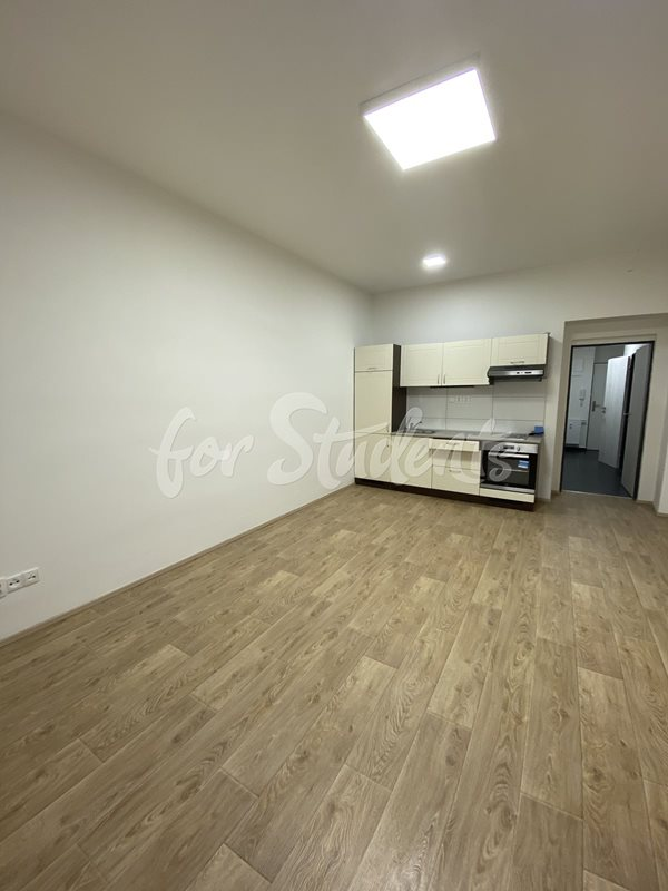 New Bright and spacious studio apartment close to Brno city centre  (file 405Ad.jpg)