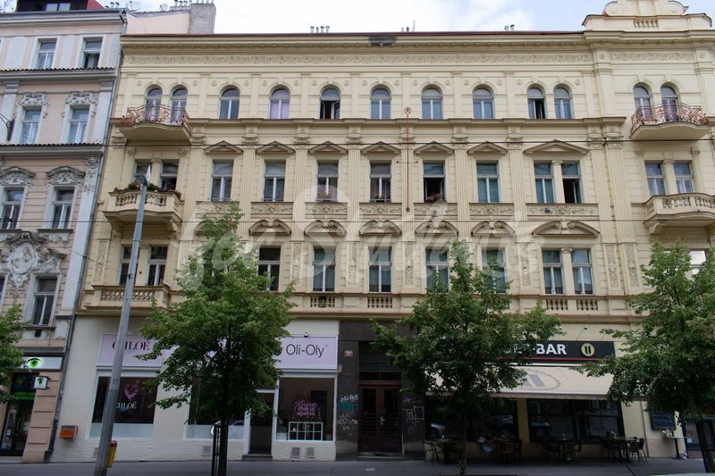 Rooms available in a three bedroom apartment in Vinohrady (file ff9e93d6-609c-423b-aab3-7a93d24babb4.jpg)