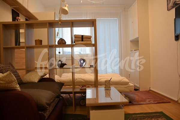 Spacious studio apartment with balcony, Prague - P29/20
