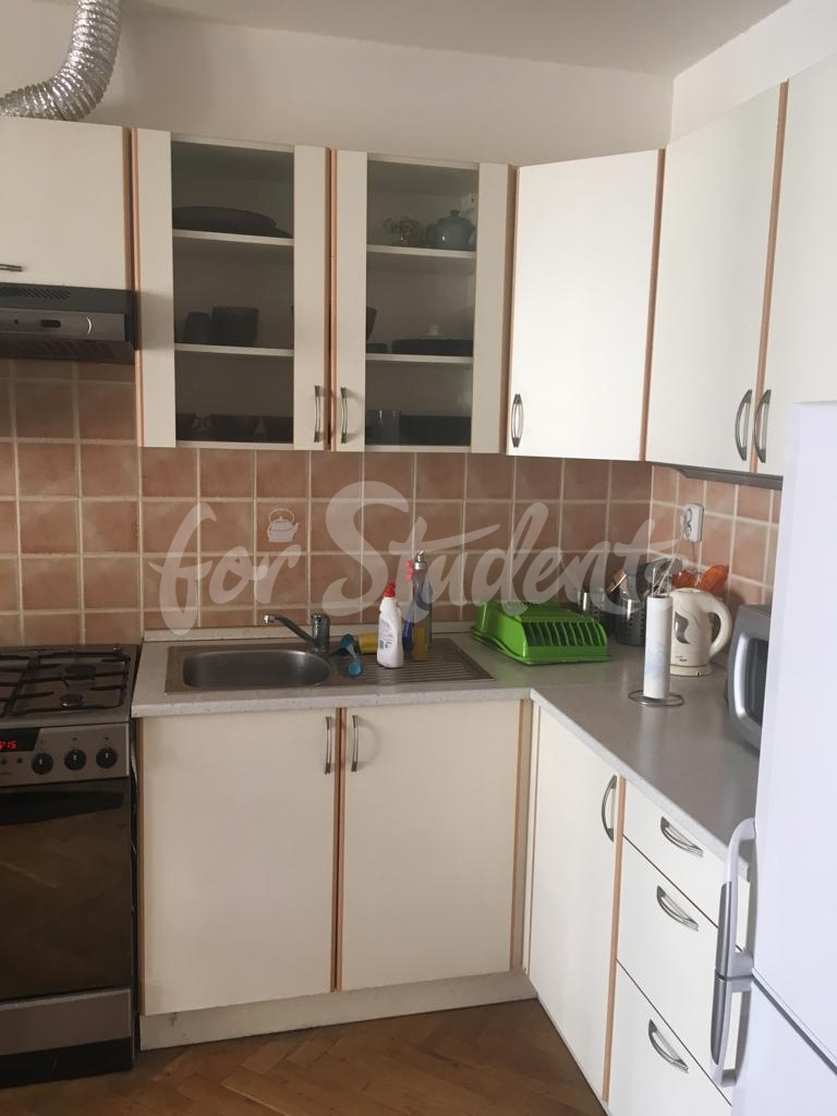 One bedroom apartment in Prague 2
