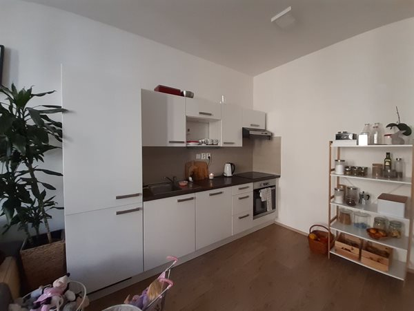 Very nice one bedroom apartment - B73/19