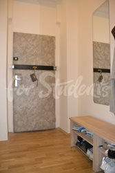 Three bedroom apartment in Prague 2 - Hall-II