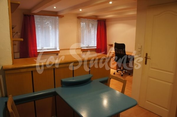 Cheap one bedroom apartment in the city centre - 58/20