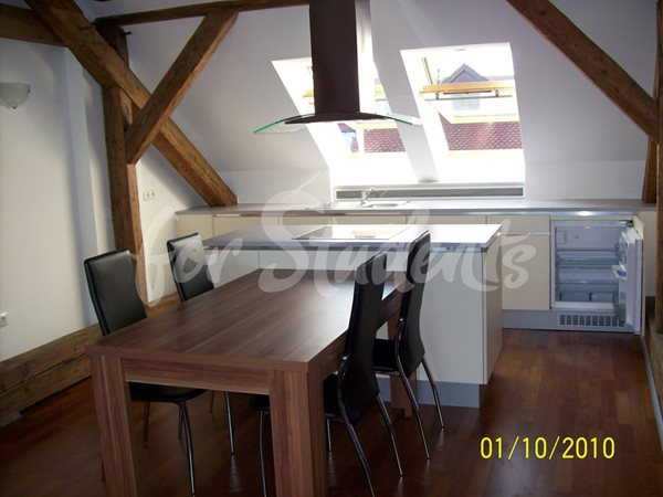 Attic two bedroom apartment in the Old Town, Hradec Králové - 74/20