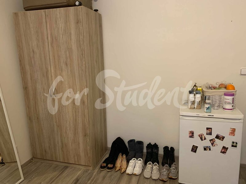 One bedroom available in a female three bedroom apartment in New Town (file 54516836_420789488466964_4473866479313354752_n.jpg)