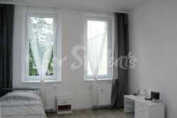 Spacious one bedroom apartment close to Brno centre - pokoj