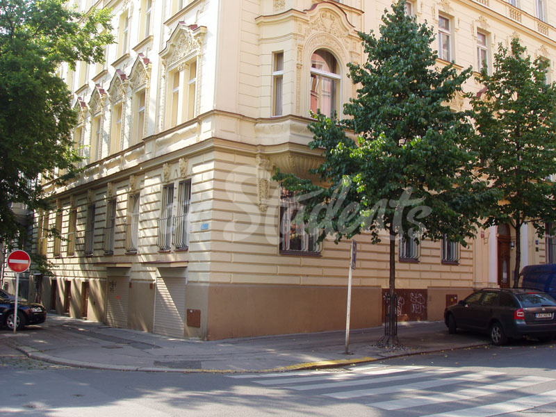Spacious one bedroom flat in Vinohrady