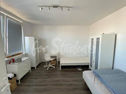 Two rooms available in a two bedroom apartment, Prague  - 118347702_1065873567180768_5426623834972218508_n