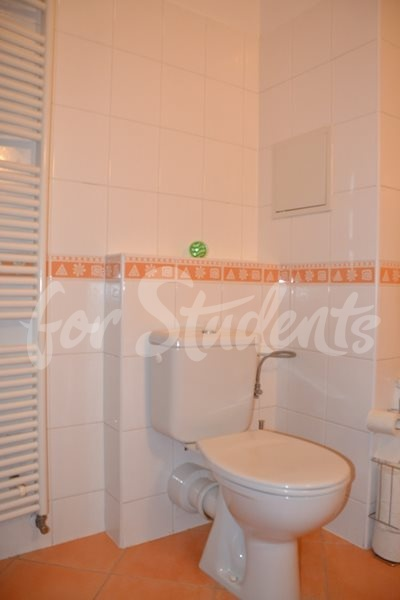 Spacious and modern studio apartment, Prague (file bathroom-IV.jpg)