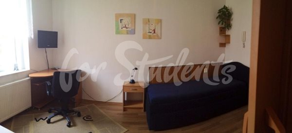 Spacious studio apartment close to the Faculty of Medicine, Prague - P15/21