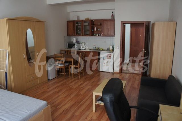 Spacious studio apartment in the Old Town