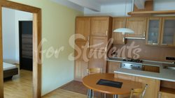Spacious one bedroom apartment in New Town, Hradec Králové - 431