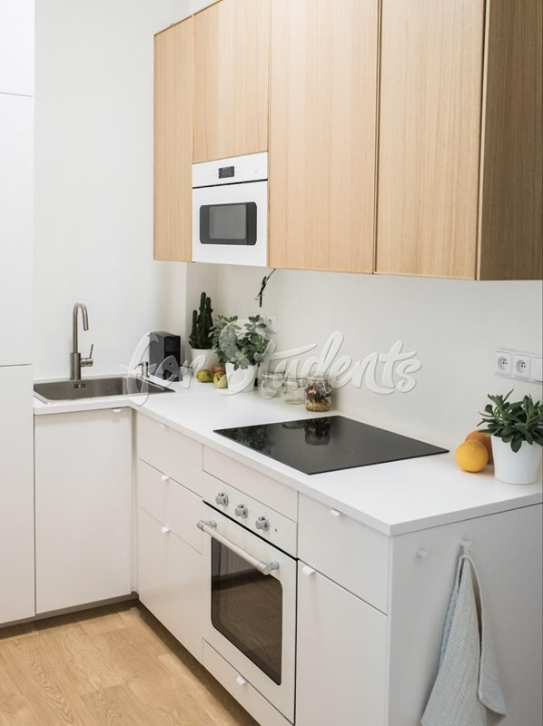 DISCOUNT Very modern double room close to city center (file Kuchyne-prizemi.jpg)