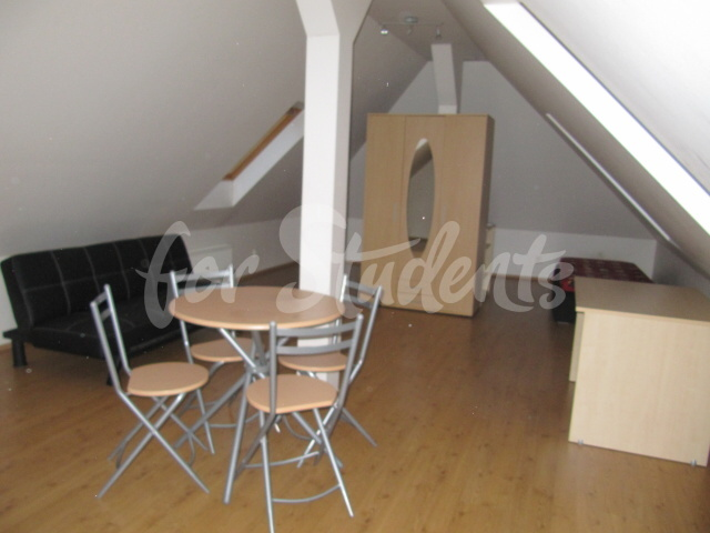 Spacious studio apartment in the Old Town, Hradec Králové