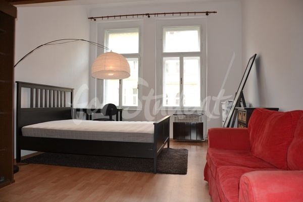 Large one bedroom flat in Prague 2 - P161