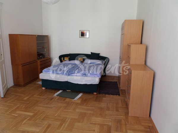 One bedroom apartment available in city center - 22/19