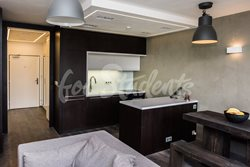 Luxurious one bedroom apartment - MIL_4439