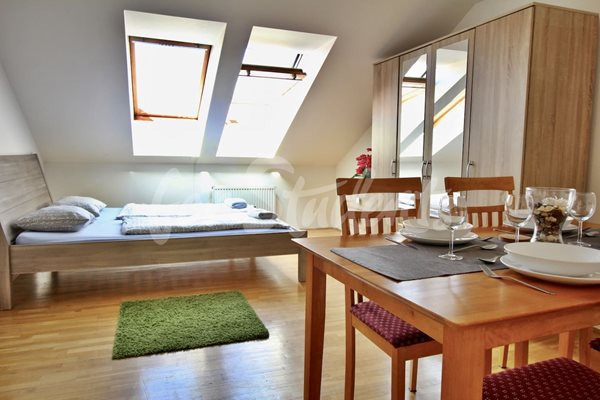 Two bedroom attic apartment in Prague 1 - P29/19