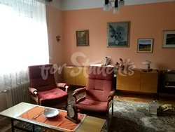 Cheap one bedroom apartment near to Faculty of Medicine - Obyvaci-pokoj-1
