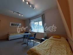 Nice room with private bathroom - pokoj