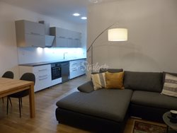 Two bedroom apartment for rent in Dejvice - P1020146