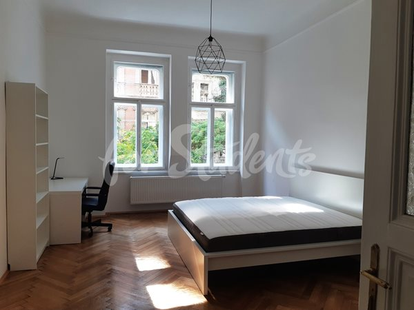 One bedroom available in two bedroom apartment in Prague 2 - RP10