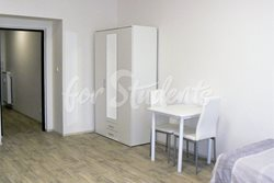 Spacious one bedroom apartment close to Brno centre - pokoj5