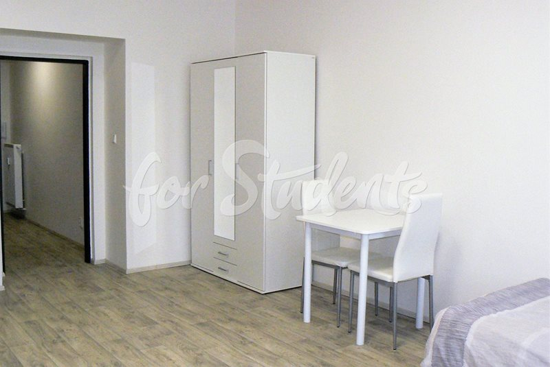 Spacious one bedroom apartment close to Brno centre (file pokoj5.jpg)