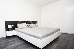 Luxurious one bedroom apartment - MIL_4416