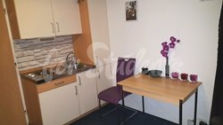 Private studio apartment in a great location, Prague 3 - kuchyn-2