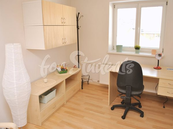 Cosy studio apartment in the city centre - B29/19