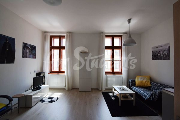 Nice and modern one bedroom apartment in the Old Town - 56/19