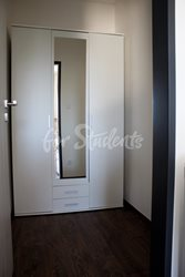Nice one bedroom apartment, Brno - 602B