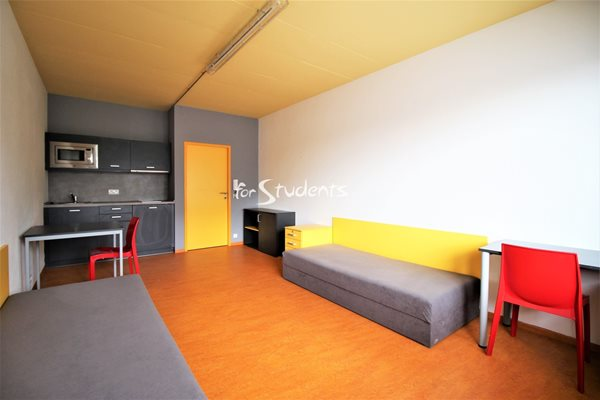 Modern studio apartment  - B23/19