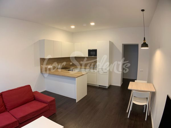 Newly reconstructed one bedroom apartment in New Town, Hradec Králové - 110/20