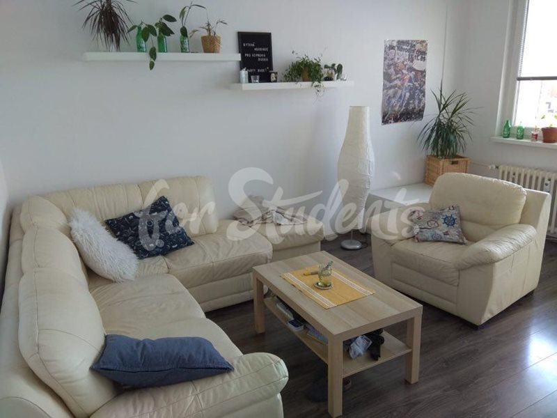 Two bedroom apartment in calm area, Prague (file 118503218_2710144435972498_2372009321793576522_n.jpg)