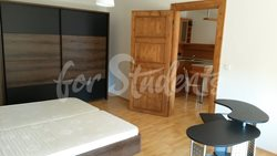 Spacious one bedroom apartment in New Town, Hradec Králové - 418