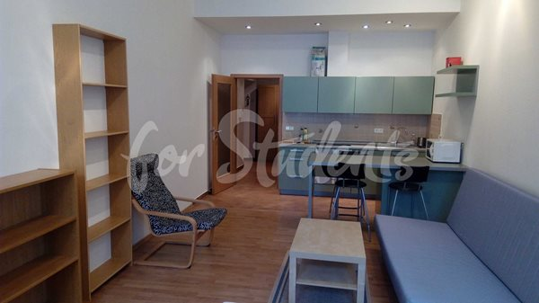 Studio apartment in the Old Town - 36/20