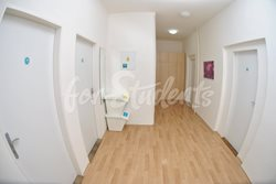 Place for girl in a double room in the Brno city centre - chodba