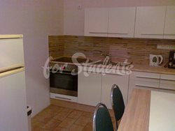 Two bedroom apartment in the city center - cp-273-(09)