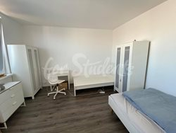 Two rooms available in a two bedroom apartment, Prague  - 118470972_585599762108508_3696185110975937291_n