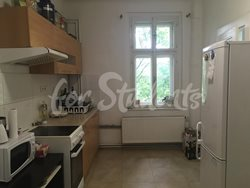 Spacious two bedroom apartment with a terrace, Prague - kitchen